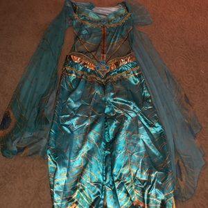 Princess Jasmine Costume.